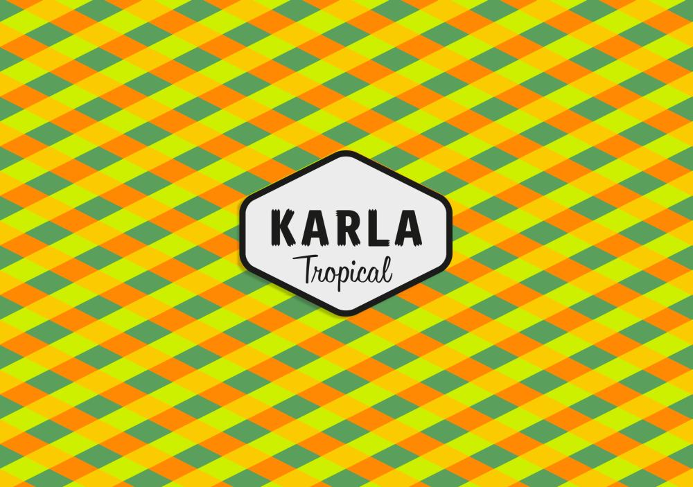 Brandsummit---Karla-01